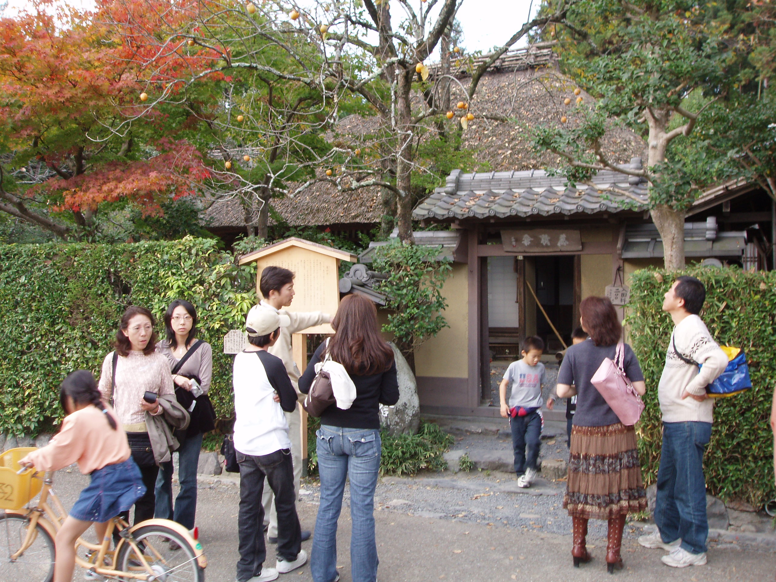 Rakushisha (Fallen Persimmons Hut) complete with persimmons – the hut where Basho stayed with his friend Kyorai in